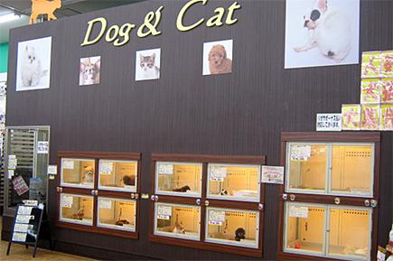 ペットコート近江八幡店