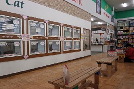 ットパーク藤枝水守店