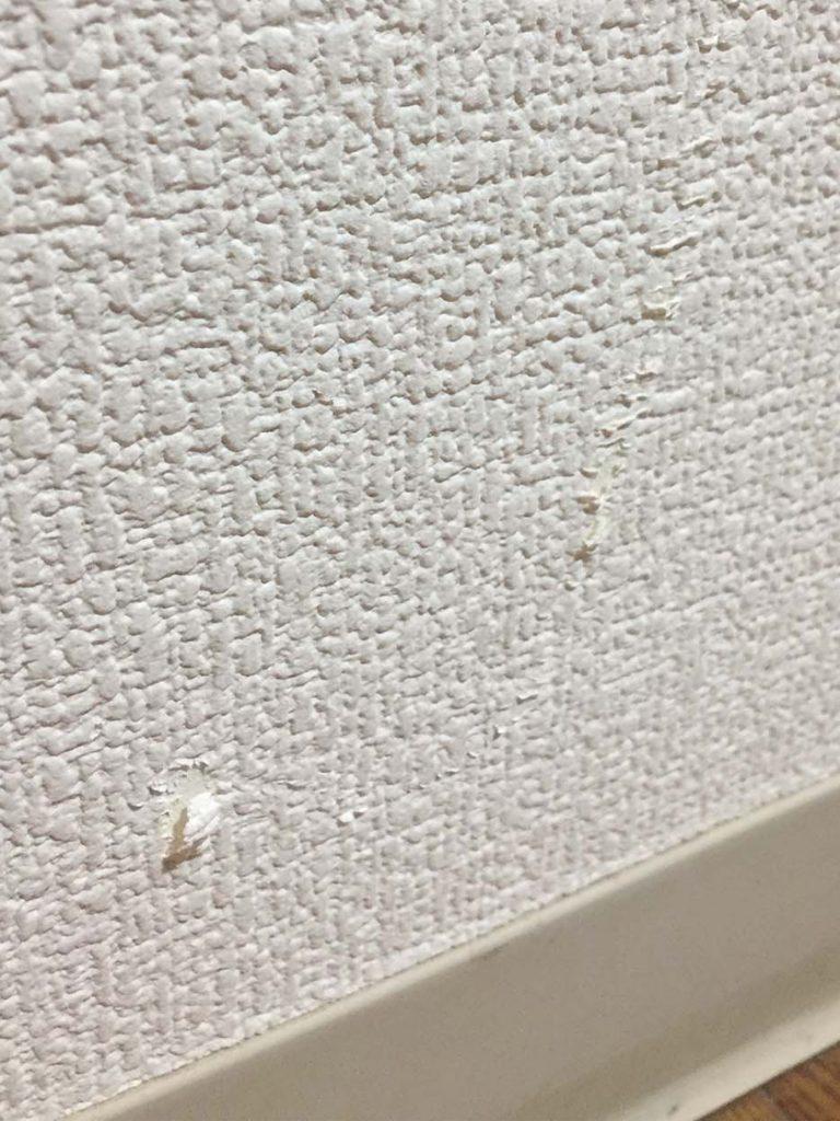 たったの3ステップで壁紙の剥がれ補修 コラムカテゴリー お